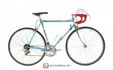 Carlton Equipe bicycle