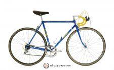 Woodrup bicycle