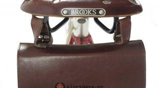 J F Wilson with Brooks saddle and bag