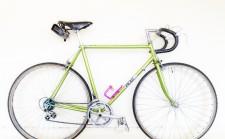 Peak Cycles bicycle