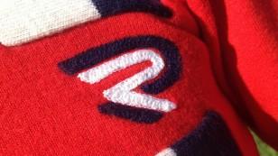 Italian jersey logo