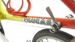 Cougar frame
