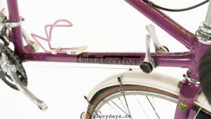 Delta Sportive frame