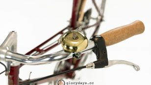 Raleigh Clubman Lady bars